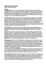 thumnail for avvedimento_02-09.pdf