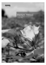 thumnail for KPMGBlantyre-Oct09.pdf
