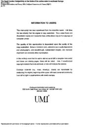 thumnail for MyriviliDissertation.pdf