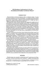 thumnail for Broyde_1980_CyclobutaneDimers_Biopolymers.pdf