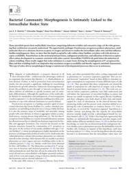 thumnail for J._Bacteriol.-2013-Dietrich-1371-80.pdf