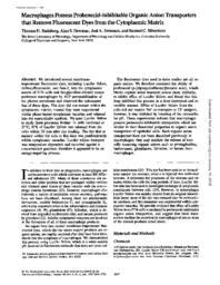 thumnail for J_Cell_Biol-1987-Steinberg-2695-702.pdf
