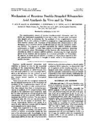 thumnail for J._Virol.-1971-Acs-684-9.pdf