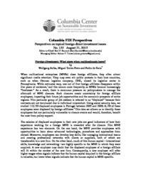 thumnail for Perspective-Sofka-et.-al.-Final-for-Publication.pdf