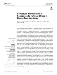 thumnail for fmicb-08-01279.pdf