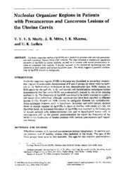 thumnail for Murty_VV_et_al_Cancer_Genet_Cytogenet_1985.pdf