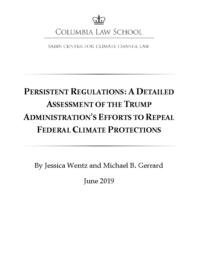 thumnail for Wentz-and-Gerrard-2019-06-Persistent-Regulations.pdf