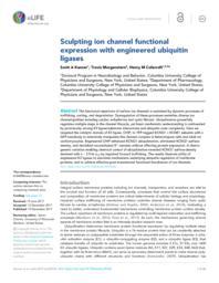 thumnail for elife-29744-v2.pdf
