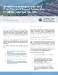 thumnail for Briefing-FPIC-and-investment-approval-July-2020.pdf