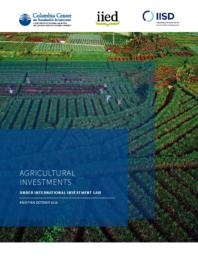 thumnail for CCSI-IIED-IISD_Agricultural-Investments-under-IIL.pdf