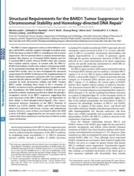 thumnail for Laufer M et al., J Biol Chem 2007.pdf
