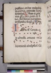 Leaf 164 - Verso