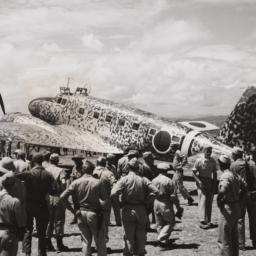 Camouflage Plane