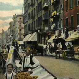 Mulberry St., New York.