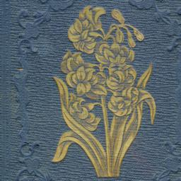 Hyacinth: Or, Affection's G...