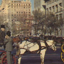 Carriages on 59th Street