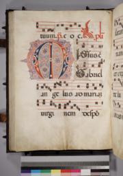 Leaf 101 - Verso