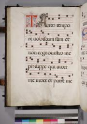 Leaf 116 - Verso
