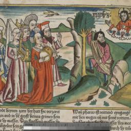 Biblia Germanica