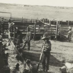 Ranch Workers