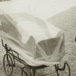 Covered Carriage