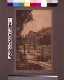 Steps, viewed from lower garden, leading to upper terrace.